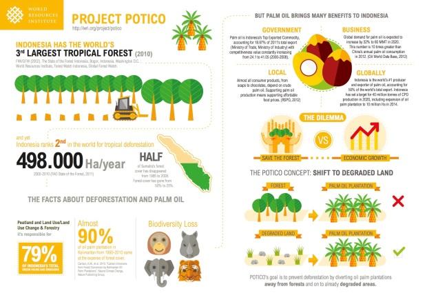 Project Potico Info.